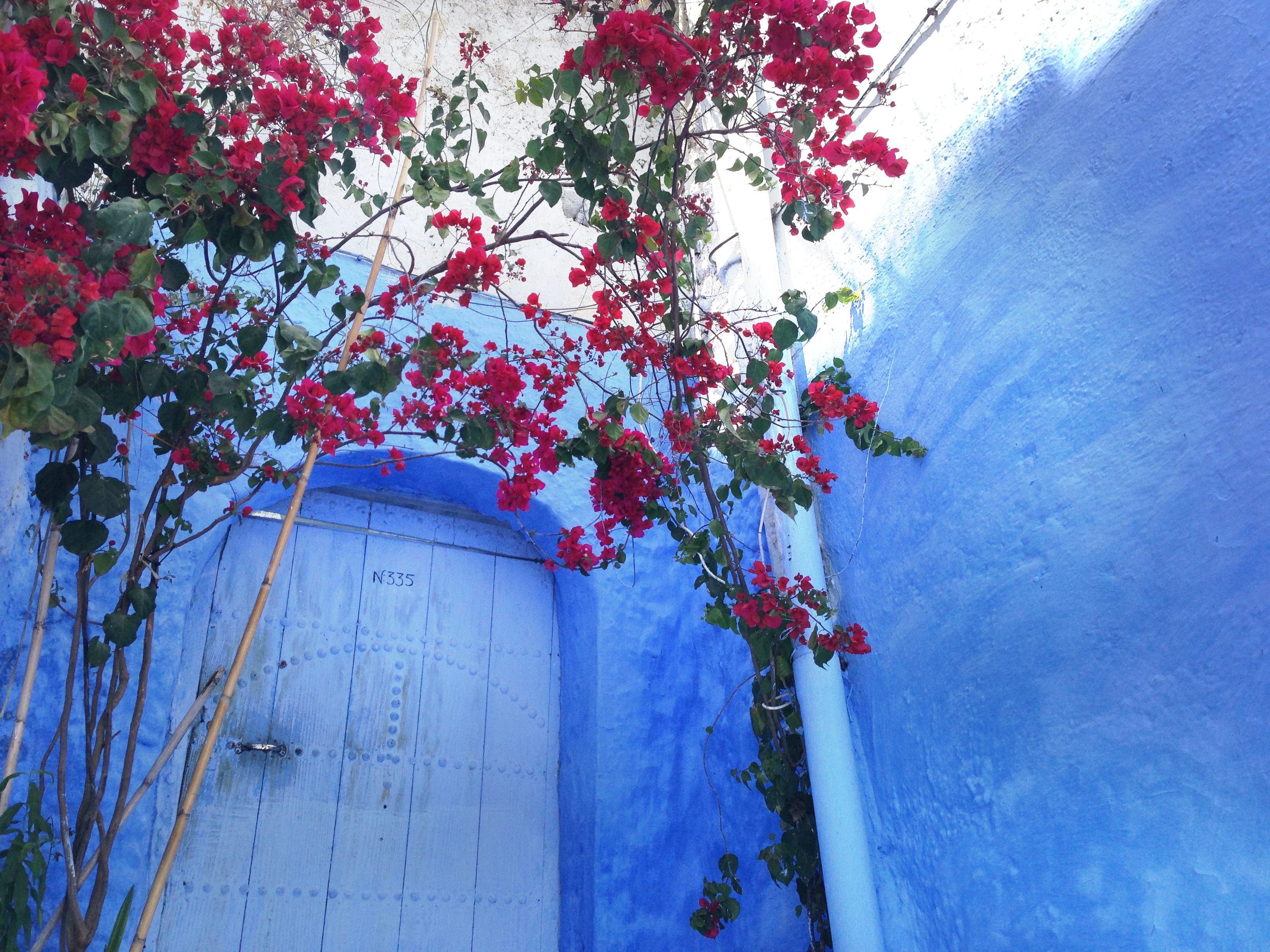 シェフシャウエン(モロッコ)