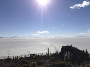 ウユニ塩湖(サボテン島)