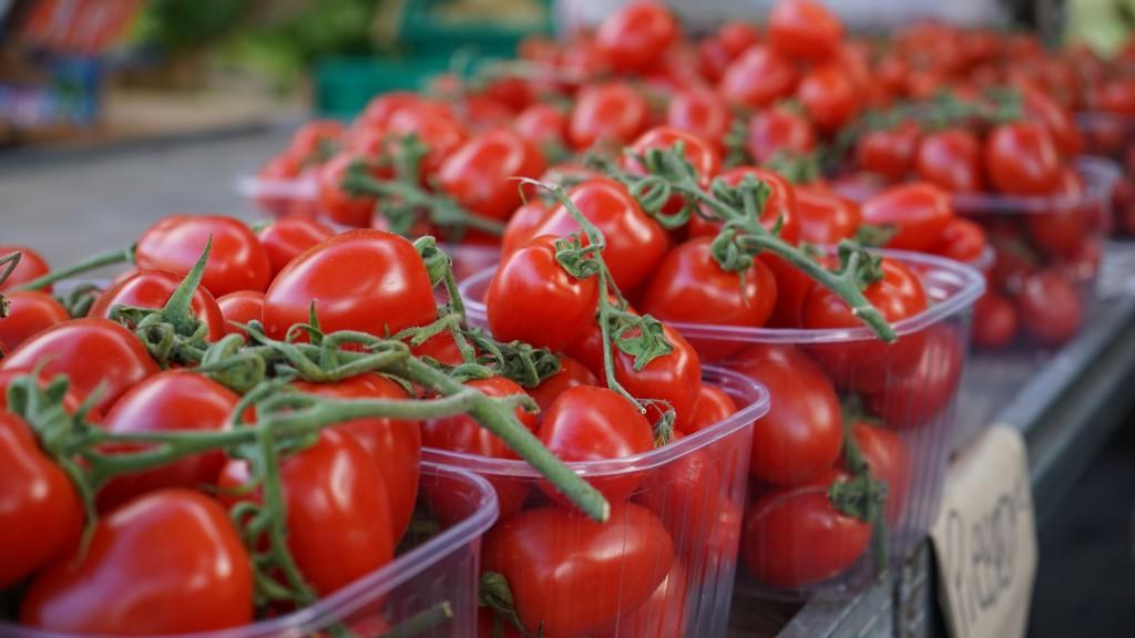真っ赤な新鮮トマト(カターニア)